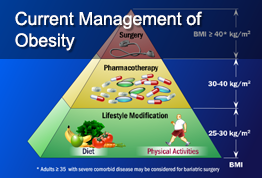 Current Management of Obesity