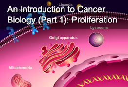 An Introduction to Cancer Biology (Part 1): Proliferation